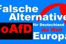 Allemagne : l'AfD, une alternative… d'extrême droite