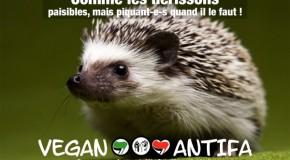 Solidarité avec le Cleah, collectif antifasciste et antispéciste