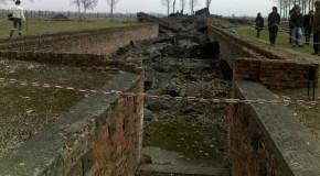 Il y a 70 ans, la libération du camp d'extermination d'Auschwitz-Birkenau