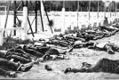 8 mai 1945 : Massacre de Sétif, Guelma et Kherrata