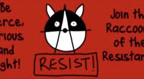 États-Unis : join the Raccoons of the Resistance !