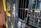 Italie : attentat incendiaire fasciste au CSA MAGAZZINO 4