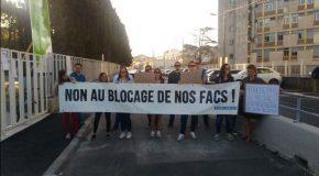 A la Faculté des Sciences de Montpellier, les identitaires prêtent main forte à la droite pour étouffer le mouvement étudiant.