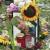 Allemagne : à Chemnitz, derrière la haine, la récupération politique