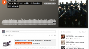 Ayoub, skin d'influence (émission de Radio Parleur avec la Horde)
